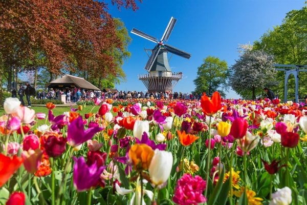 Keukenhof package deal